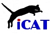 International Cat Agility Tournaments (club)